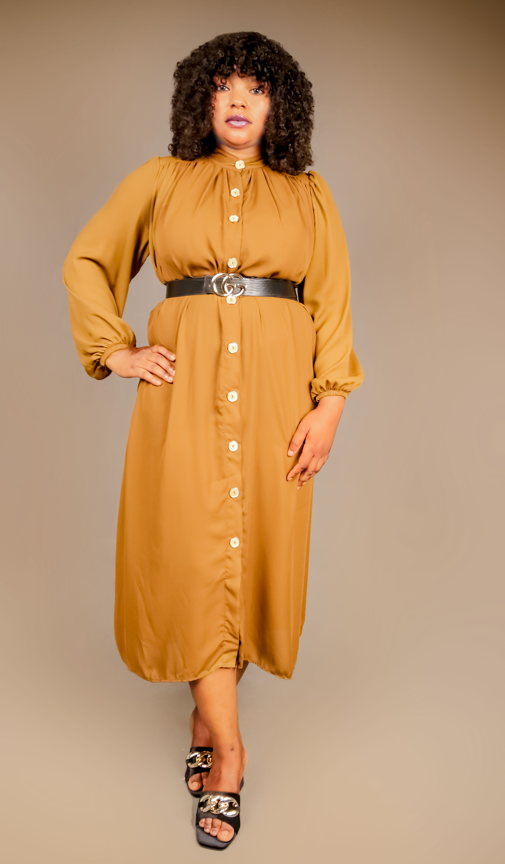 Kimberly Light Brown Shirt Dress